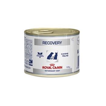 Ração Royal Canin Lata Recovery - Cães e Gatos Adultos